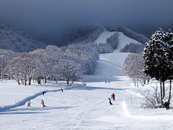 Kurohime Kogen Snow Park In Nagano Day Plan From Tokyo